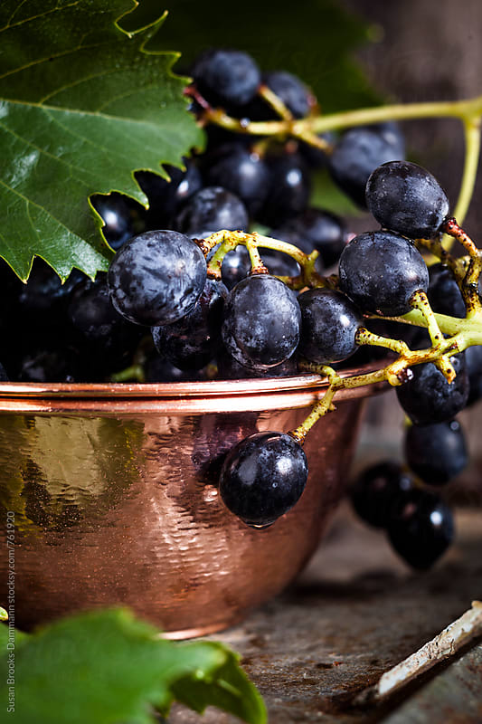 Purple grapes in bowl by Susan Brooks-Dammann for Stocksy United