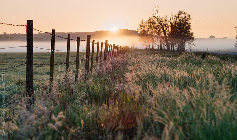 Sun Rising over an Australian Farm by Gary Radler Photography for Stocksy United