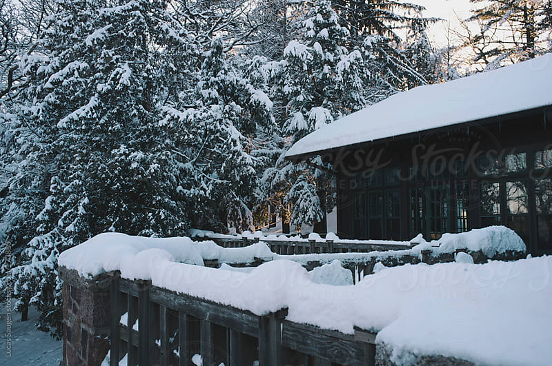 Fresh snow on a lodge in the woods. by Lucas Saugen for Stocksy United