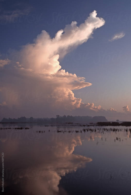 thunderheads storm clouds building over the coast of South Carolina near the Ashepoo River morning by Ron Mellott for Stocksy United