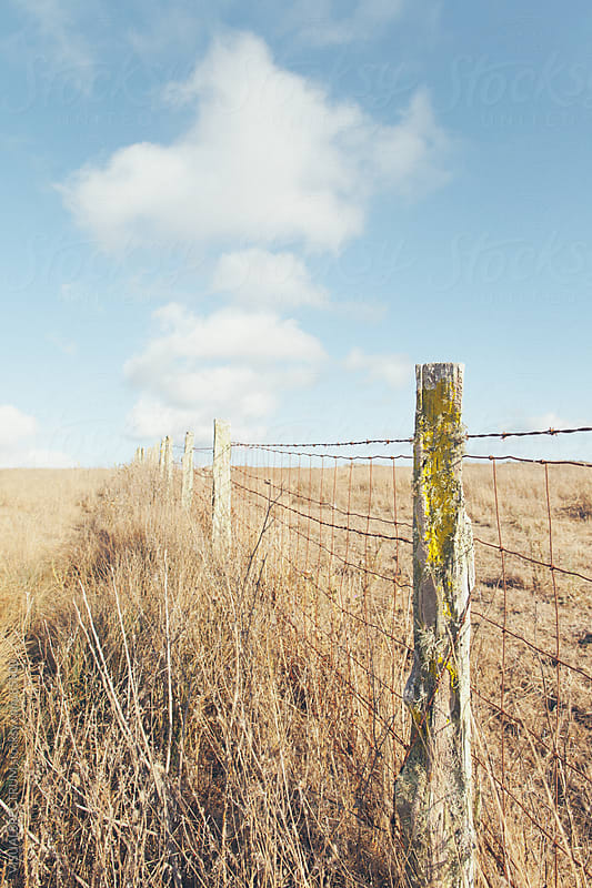 Rustic Fence by VISUALSPECTRUM for Stocksy United