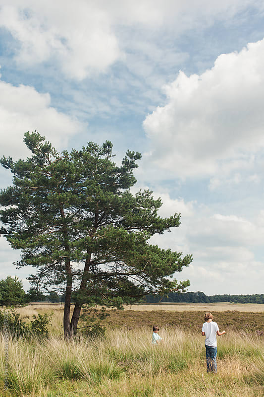 Two boys standing in a field under a big tree in the summer by Cindy Prins for Stocksy United