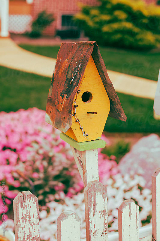 Cute vintage birdhouse by Image Supply Co for Stocksy United