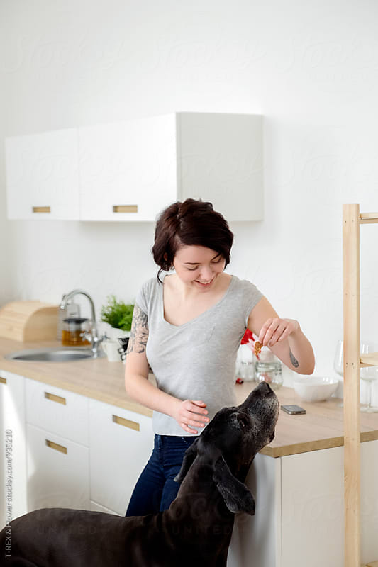 Young woman feeding her dog at kitchen by T-REX & Flower for Stocksy United