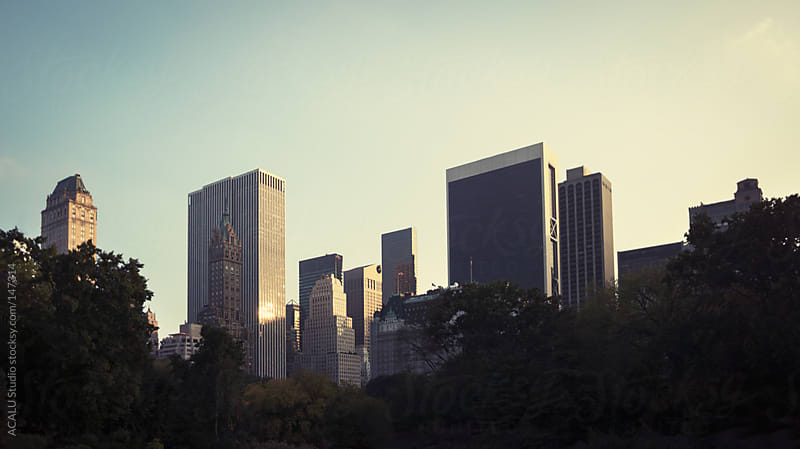 Skyscrapers from Central Park by ACALU Studio for Stocksy United