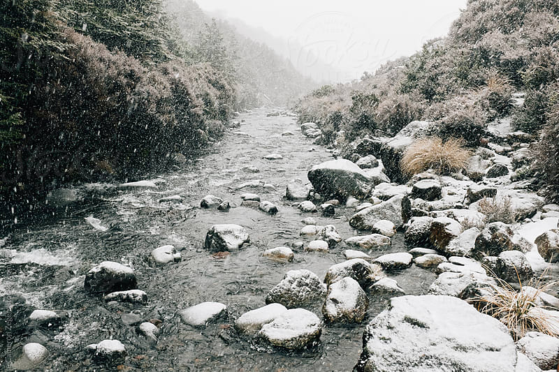 snowy stream by Cameron Zegers for Stocksy United