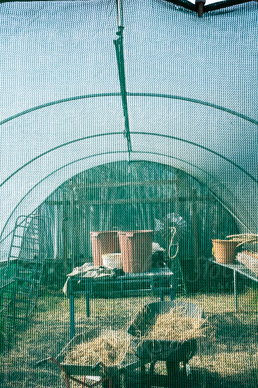 Looking through a shade cloth into a potting shed by Rowena Naylor for Stocksy United