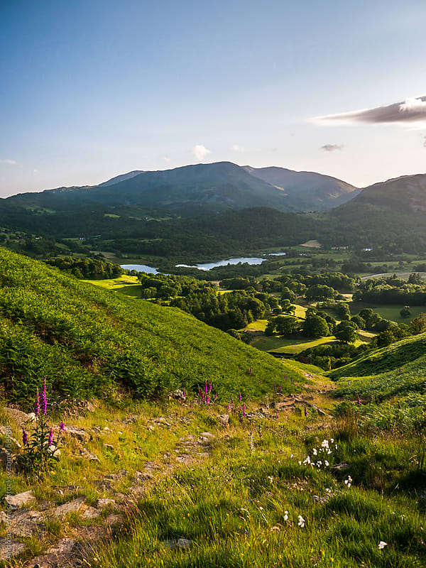 Idyllic Scenery in the British Lake District by Andreas Wonisch for Stocksy United