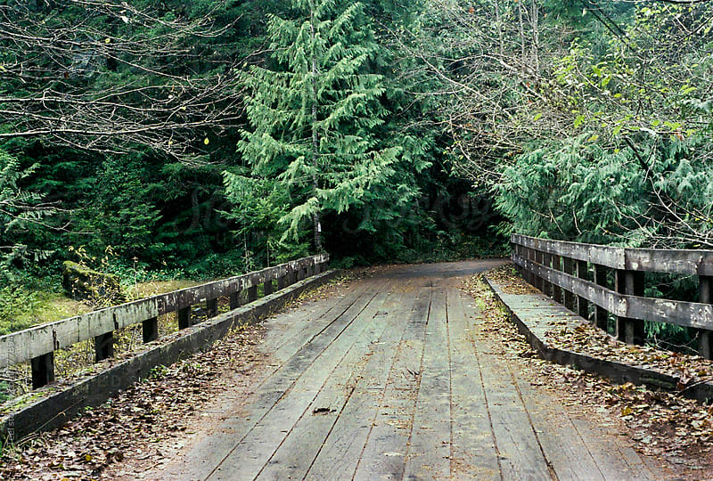 rustic wood bridge in the forest by Tana Teel for Stocksy United