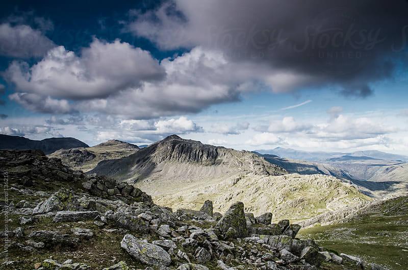 Rocky Wilderness by Neil Warburton for Stocksy United