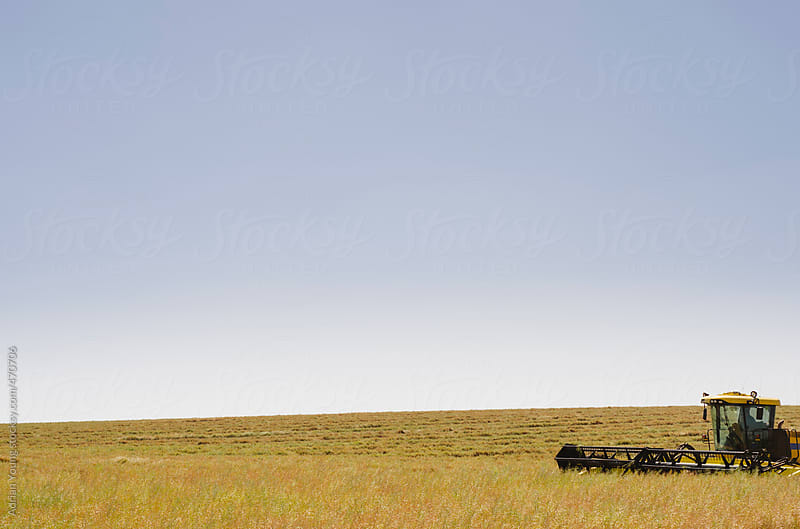Canola Swather on a Farm by Adrian Young for Stocksy United