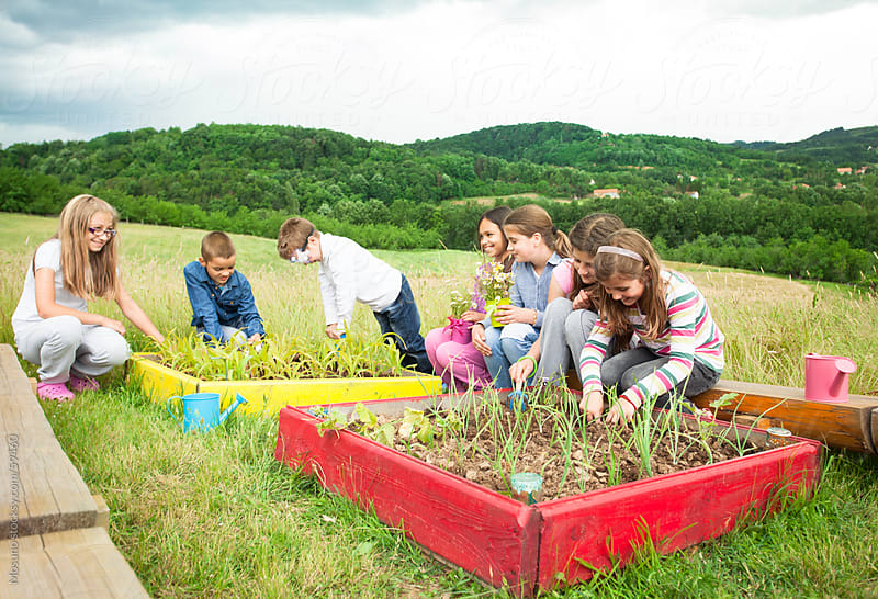 Children working in a garden. by Mosuno for Stocksy United