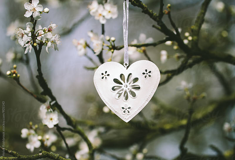 A white metal heart decoration hanging in a tree by Helen Rushbrook for Stocksy United