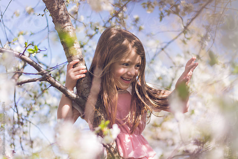 Child sitting on tree in bloom by Dejan Ristovski for Stocksy United