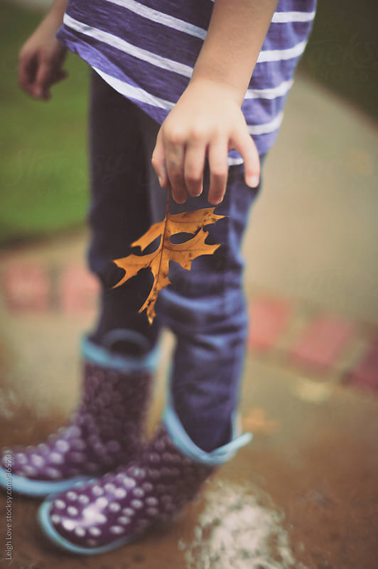 Polka Dot Purple Rain Boots and Oak Leaf by Leigh Love for Stocksy United