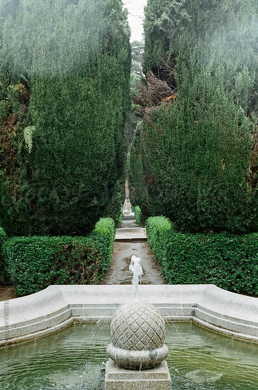 Sabatini Gardens by Milles Studio for Stocksy United