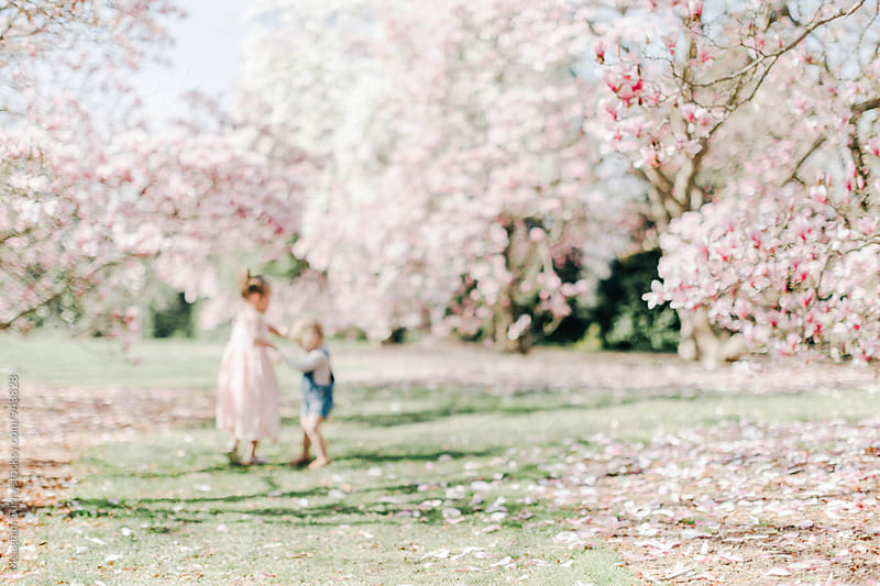 two little girls playing ring around the rosie underneath flowering trees in spring by Meaghan Curry for Stocksy United