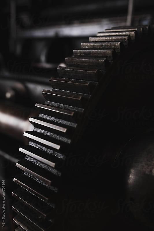 Gear by MEM Studio for Stocksy United
