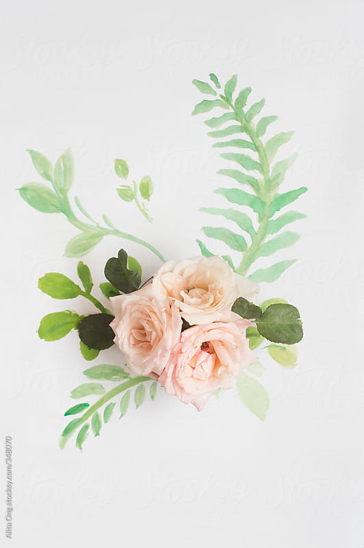 Roses on painted fern leaf by Alita Ong for Stocksy United