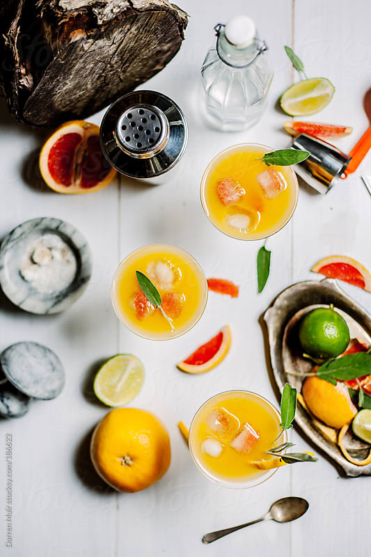 Citrus Cocktails. by Darren Muir for Stocksy United