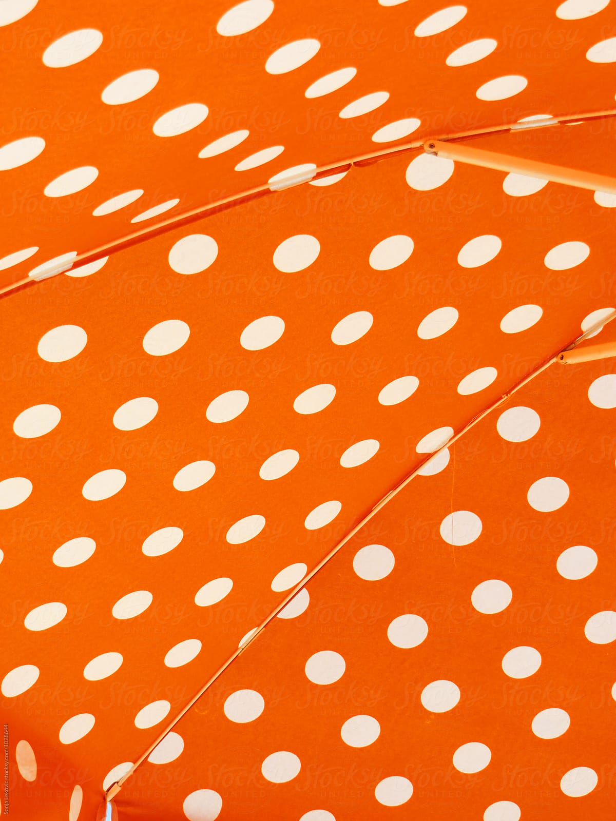 e0008b2bcec49b Orange Sun Umbrella With White Dots Background