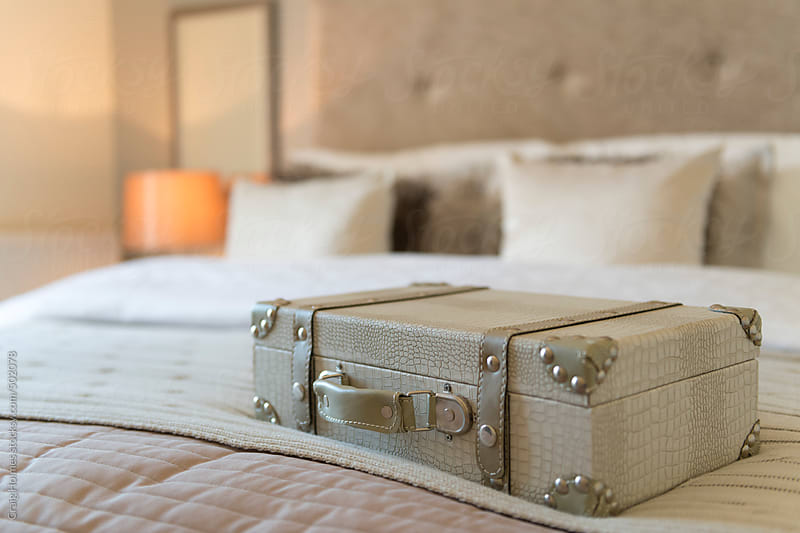 A fake snake skin case on a bed in a bedroom by Craig Holmes for Stocksy United