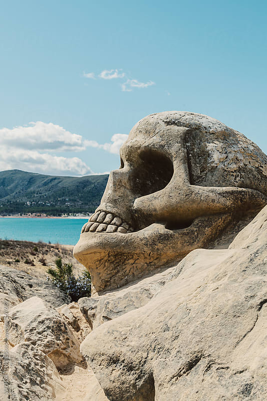 Stone Skull by VICTOR TORRES for Stocksy United