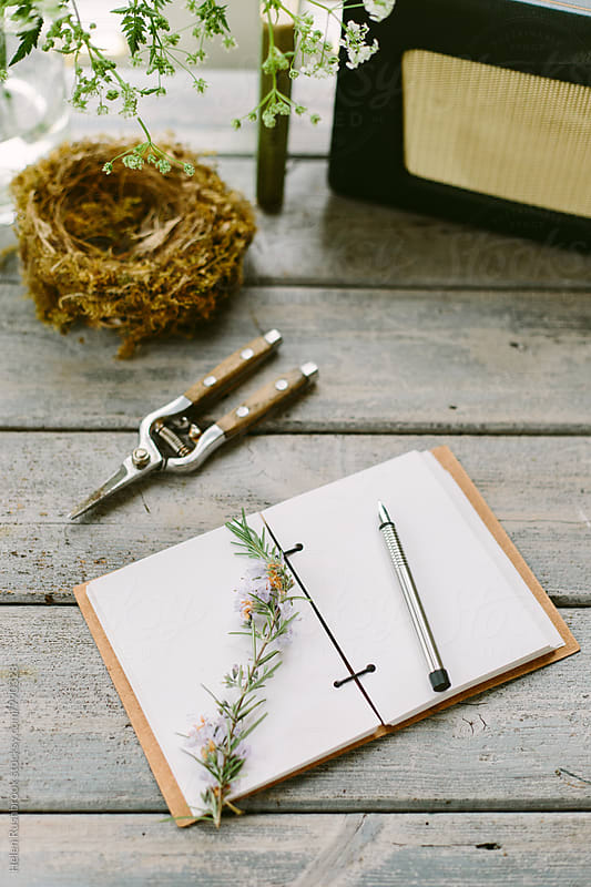 Rosemary on the blank page of a notebook on a wooden table. by Helen Rushbrook for Stocksy United