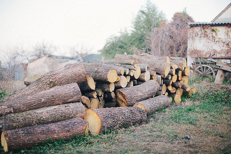 Logs in the countryside backyard  by Marija Mandic for Stocksy United