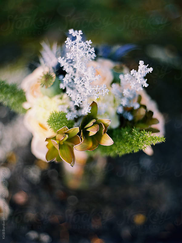 flowers outdoors by Kirill Bordon photography for Stocksy United
