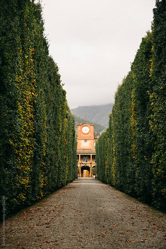 A Lucchese Villa in Tuscany at a distance in Autumn by Sarah Lalone for Stocksy United