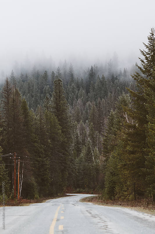 Rural road in the inland northwest.  by Justin Mullet for Stocksy United