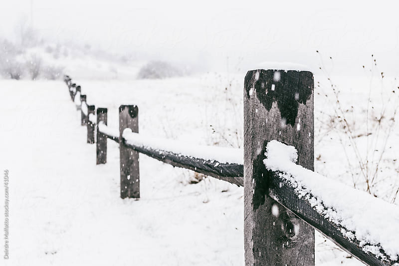 Wooden split-rail fence in the snow by Deirdre Malfatto for Stocksy United