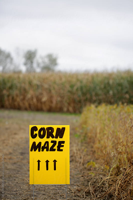 A Yellow Sign Pointing To A Corn Maze Up Ahead by ALICIA BOCK for Stocksy United