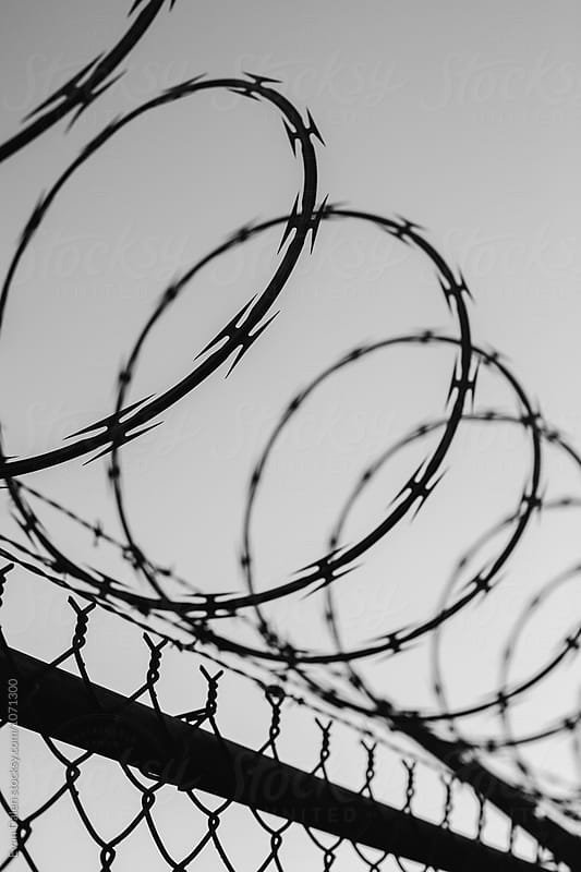 Barbed Wire Fence by Evan Dalen for Stocksy United