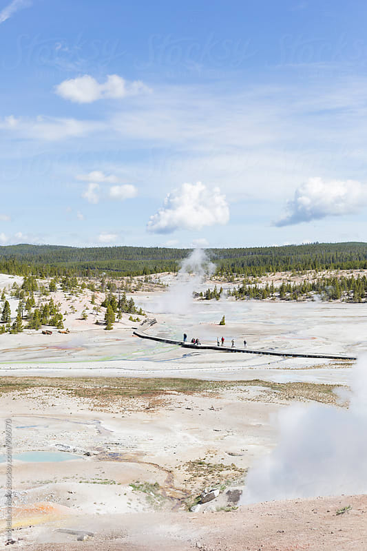 View of Norris Geyser Basin in Yellowstone National Park by michela ravasio for Stocksy United