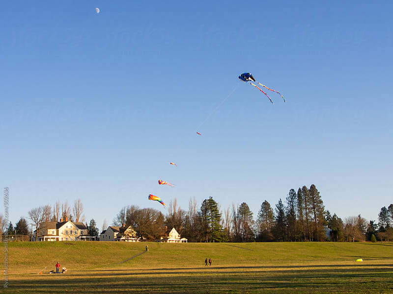 Single Line Kites by Ryan Matthew Smith for Stocksy United