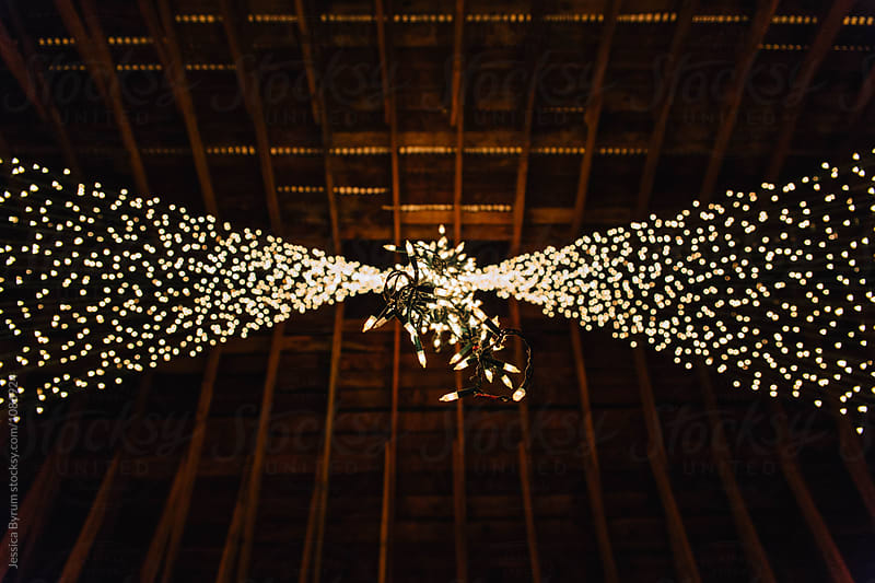 Looking up at white lights hanging in a barn as wedding decorations. by Jessica Byrum for Stocksy United