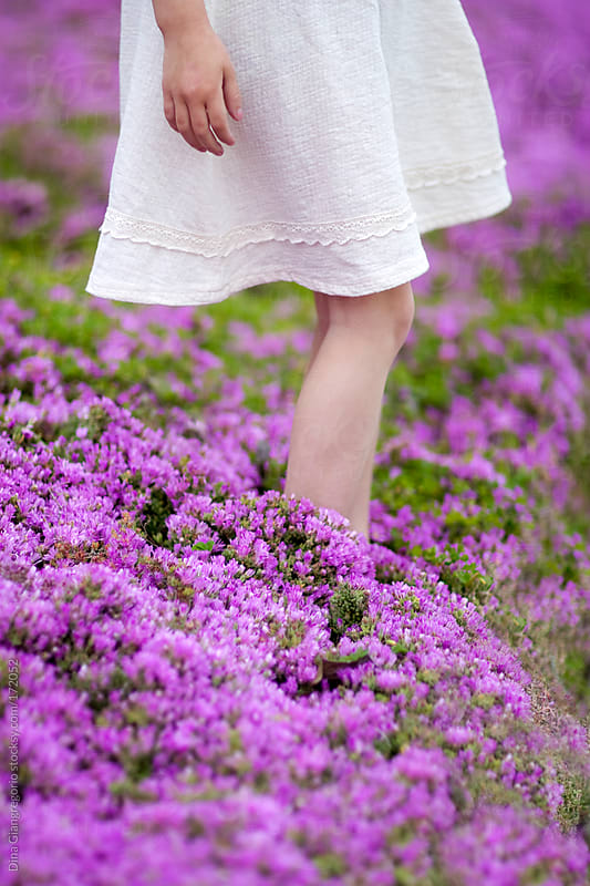 girl  wearing white dress standing in field of purple flowers by Dina Giangregorio for Stocksy United