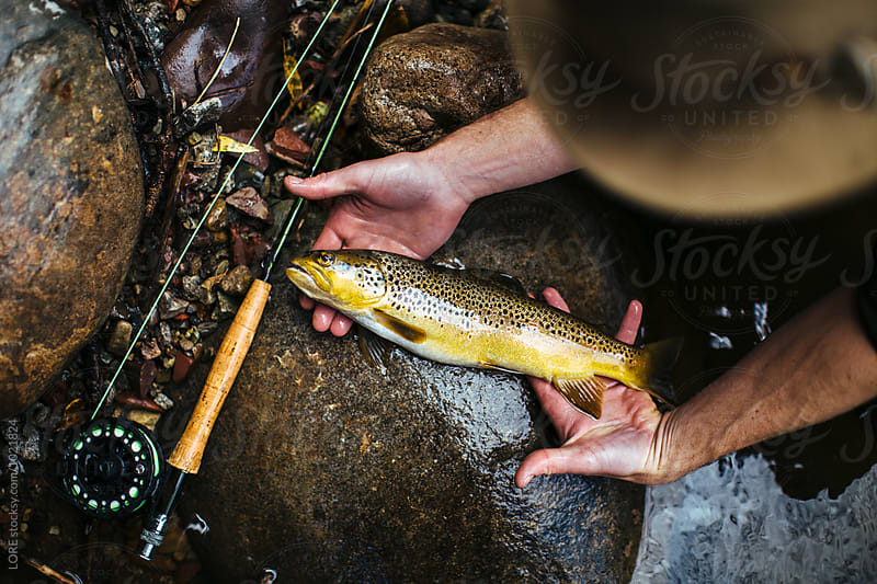 Adult male in cowboy hat with fishing rod displays his trout by LORE for Stocksy United
