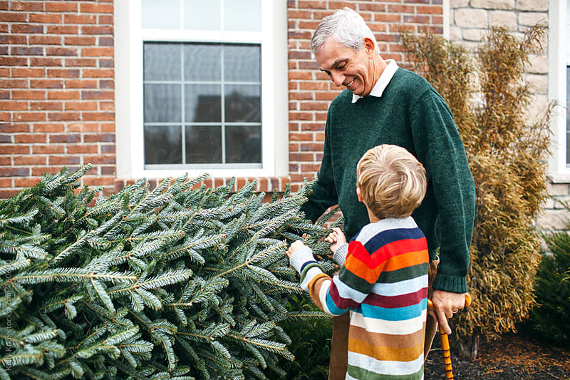 grandfather and grandson take Christmas tree home by Kelly Knox for Stocksy United