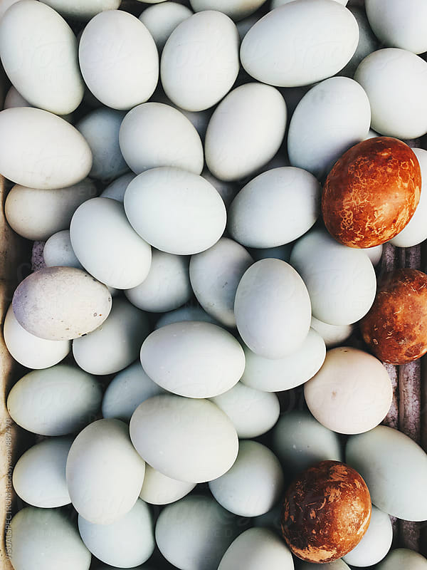 Eggs Overhead by VISUALSPECTRUM for Stocksy United