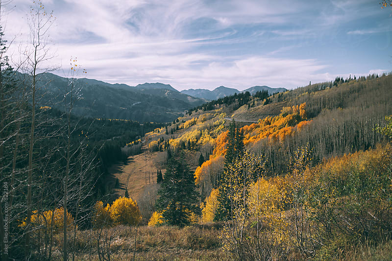 Beautiful Fall Colors In Utah by Jake Elko for Stocksy United