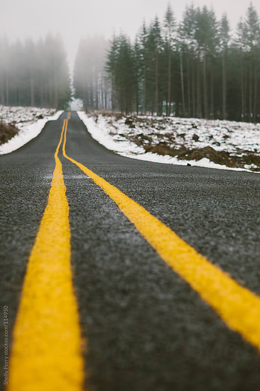 Yellow road lines on a foggy winter road  by Shelly Perry for Stocksy United