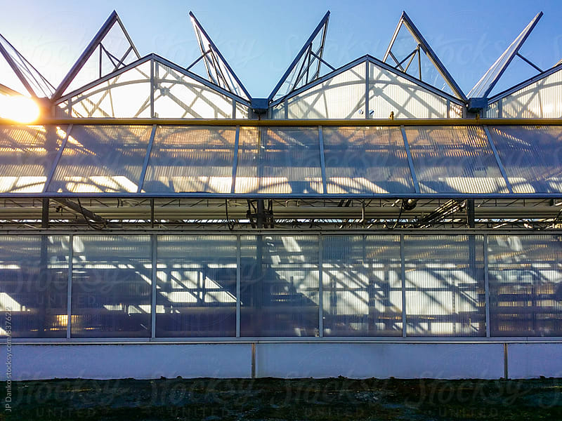 Architectural Detail of Large Scale Industrial Greenhouse on Agricultural Farm by JP Danko for Stocksy United