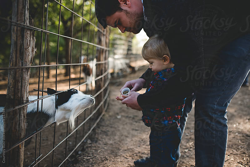 feeding the goats by Courtney Rust for Stocksy United