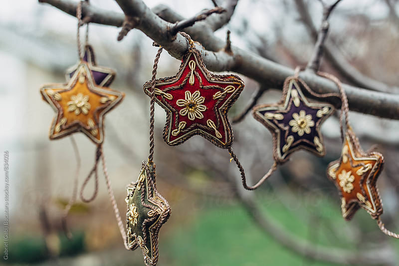 Ornamental colorful stars in a tree by Gabriel (Gabi) Bucataru for Stocksy United