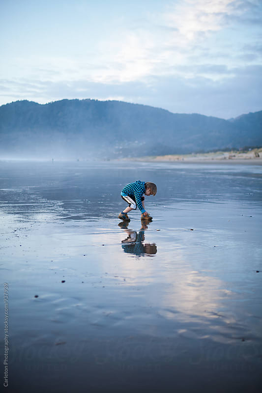 Five year old boy bends down to pick up a treasure on the beach by Carleton Photography for Stocksy United