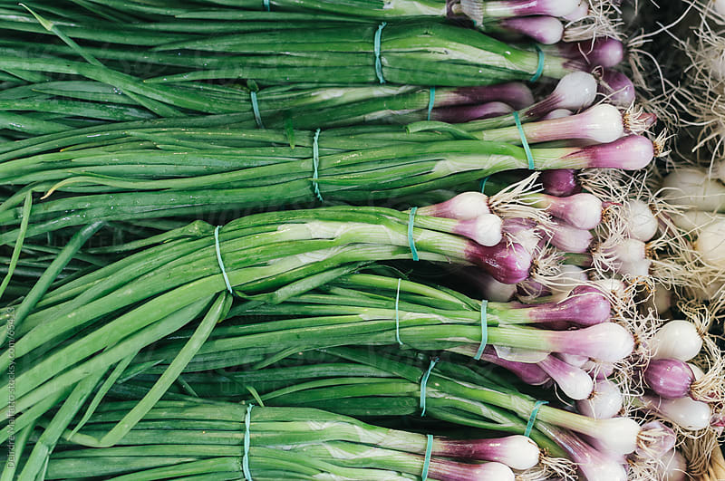 Bundles of green and purple onions at an outdoor market by Deirdre Malfatto for Stocksy United