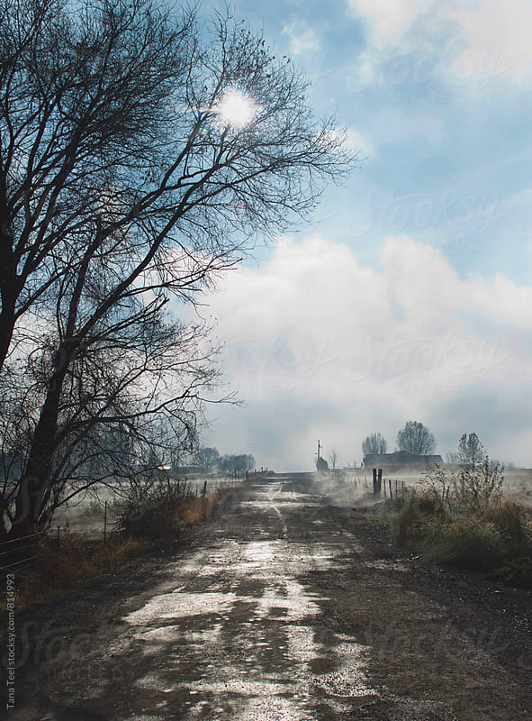 wet rural gravel road after fog lifts by Tana Teel for Stocksy United